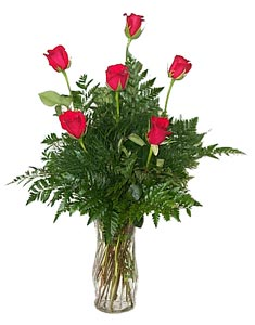 Half Dozen Red Roses Arranged