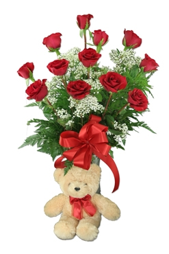 One Dozen Red Roses and Small Teddy Bear