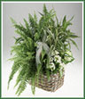 A large  basket of mixed green plants  with a blooming plant or fresh flower decoration.
