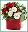 The Merry & Bright Bouquet is a charming display of seasonal cheer. Vibrant red roses, white spray roses, red hypericum berries and assorted holiday greens create a stunning look with green glass balls and green taffeta ribbon nestled within the arrangement. Arranged in a red glass cube vase, this bouquet is guaranteed to make their holiday both merry and bright.