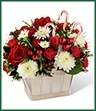 The Candy Cane Lane Bouquet is a festive and fun way to celebrate the arrival of the holiday season. Bright red roses and mini carnations are offset by snowy white chrysanthemums and assorted holiday greens, beautifully arranged in a white wash basket and accented with 3 candy canes to offer holiday joy and cheer to your special recipient.
