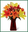 The Happy Thoughts Bouquet pops with brilliant color to celebrate the coming of the harvest months. Yellow, deep orange, rich red and bright orange Asiatic lilies create an incredible display of beauty perfectly arranged in a designer ruby square glass vase to bring your special recipient a warm wish for autumn days full of happiness.