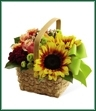 The Bright Day Basket is an abundant expression of Summer's beauty. Sunflowers, bi-colored pink roses, orange spray roses, burgundy miniature carnations, red hypericum berries and green button poms create a splash of sun-filled cheer when presented in a natural basket tied with a bright green ribbon, making this a lovely way to delight and dazzle your special recipient.