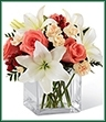 The Blushing Beauty Bouquet is a simply stunning bouquet of floral elegance and grace. Coral roses are set to capture their attention arranged amongst white Asiatic lilies, peach mini carnations, red hypericum berries and lush greens. Presented in a clear glass cubed vase, this bouquet creates a wonderful gift of blooming beauty.