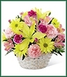 The Basket of Cheer® Bouquet sends your warmest wishes for happiness with each sunlit bloom! Yellow Asiatic lilies and traditional daisies are vibrant and beautiful arranged amongst pink carnations, pink Peruvian lilies and magenta mini carnations. Accented with lush greens and presented in a round whitewash handled basket, this arrangement is a sweet sentiment brought together to brighten your special recipient's day. GOOD basket includes 11 stems. Approx. 11