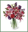 Bright hot pink roses, fragrant stargazer lilies, beautiful purple lisianthus and larkspur are arranged with silver dollar eucalyptus in an urn-shaped glass vase. This is a wonderful bouquet for anniversaries, birthdays, or any cause for celebration.